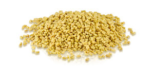 fenugreek_seedss-sm.jpg